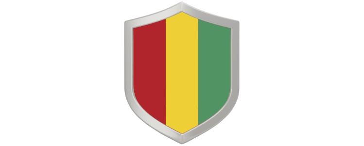 Guinea-Kategorie